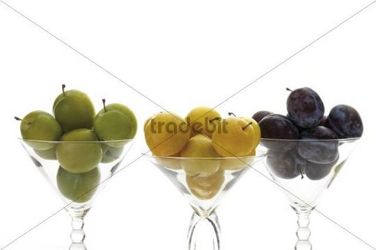 Greengages (Prunus italica), yellow plums in glasses