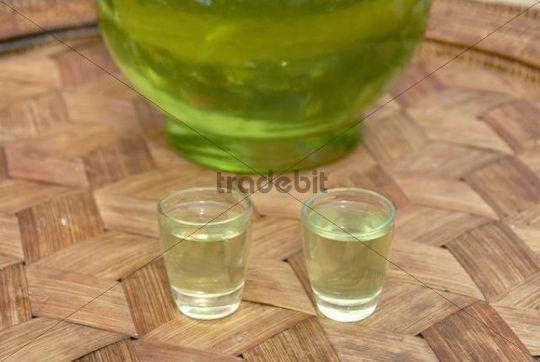 Alcohol, Green Lao Lao, Lao rice liquor in two shot glasses, Phongsali, Laos, Southeast Asia, Asia