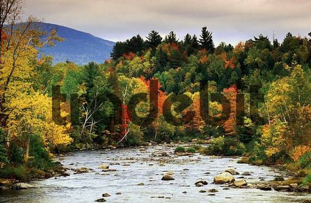 River in autumn, Vermont, USA