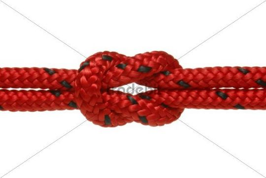 Two climbing ropes are entwinded, symbolic image for cohesion, strong hold
