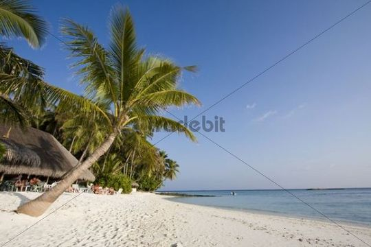 Blue Lagoon Bar, Fihalhohi Island, Maldives, Indian Ocean