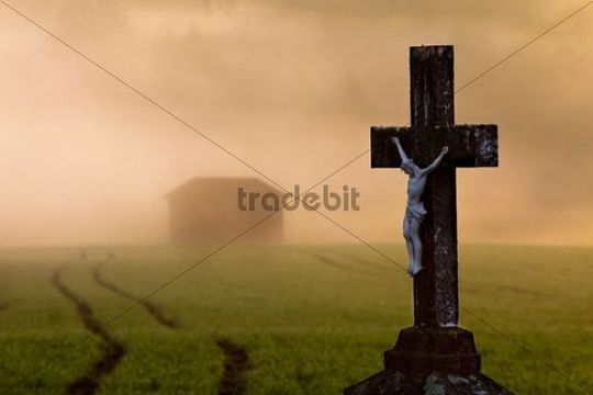 Wayside cross, morning mood in the Hegau area near Lake Constance, Baden-Wuerttemberg, Germany, Europe