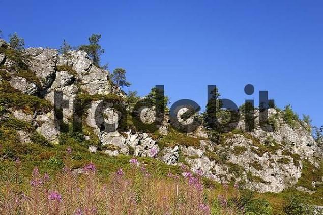 Pfahl rocks near Viechtach , Bavarian Forest Bavaria Germany