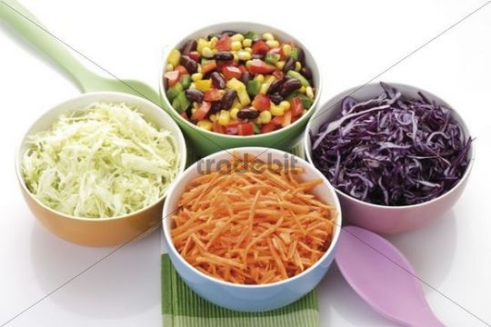 Different kinds of vegetables in porcelain bowls, Mexican vegetables, carrot sticks, cabbage, red cabbage