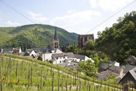 View of the St. Peter´s Church and the ruin of Werner chapel in the old town of Bacharch, Unesco World Heritage Upper Middle Rhine Valley, Bacharach, Rhineland Palatinate, Germany, Europe