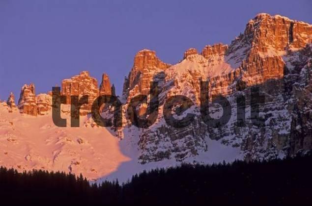 Rosengarten peaks in evening light, Dolomites