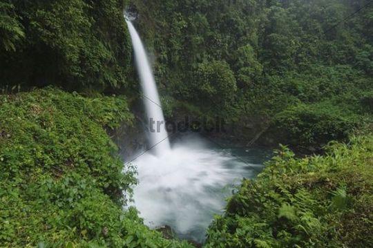 La Paz Wasserfall im Nebelwald, Central Valley, Costa Rica, Mittelamerika