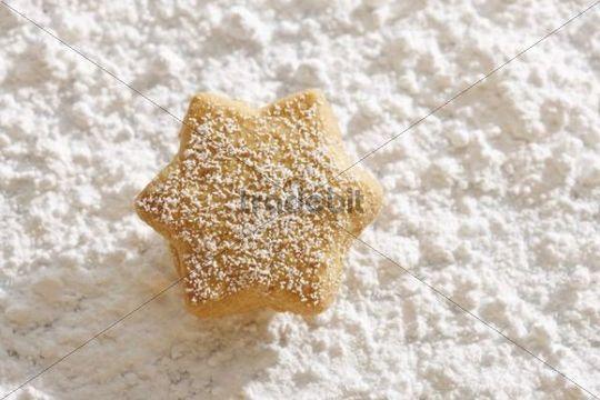 Star-shaped shortcrust cookie on powdered sugar