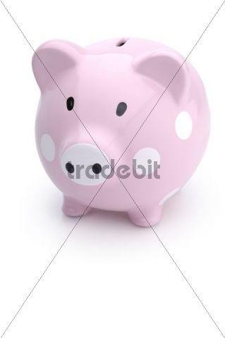 Cute pink piggy bank
