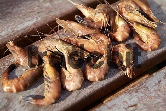 crabs are gepult