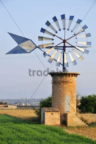 Windmill near Es Pont d´Inca, Majorca, Balearic Islands, Spain, Europe