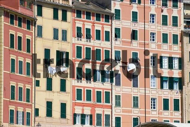 Camogli near Portofino Riviera di Levante Liguria Italy