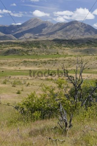 View over a grassy landscape on the mountains of the Rachel Range, Molesworth, South Island, New Zealand