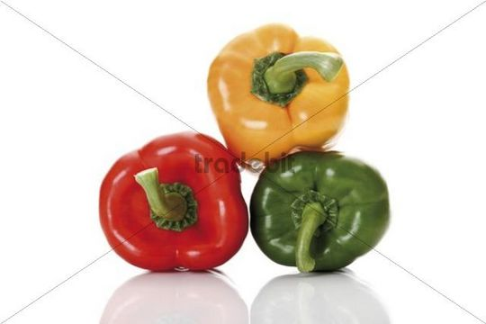 Three colorful peppers, red, yellow, green