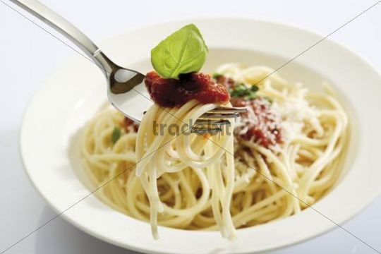 Spaghetti Bolognese on a fork