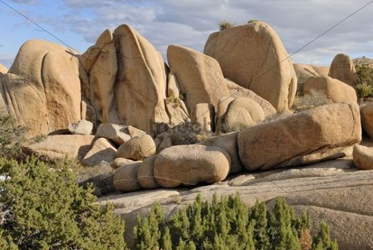 Rock formation at the White Tank, monzogranitee, Joshua Tree National Park, Palm Desert, Southern California, USA