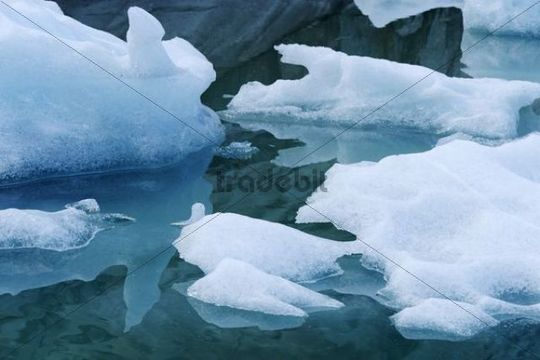 Ice floes on the glacial lake of the Aletschgletscher glacier, Goms, Valais, Switzerland, Europe