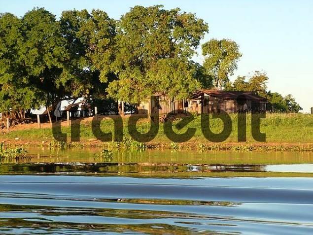huts of farm workers Campesinos at the Rio Paraguay, Pantanal
