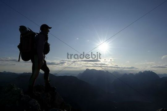 Mountain climber in front of alpine peaks at sunrise, Berwang, Tyrol, Ausserfern, Austria, Europe