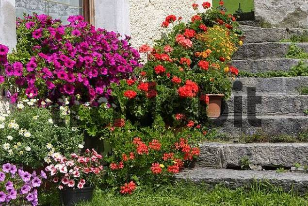 flowers at the church St.Peter at Ahrn, South Tyrol, Italy