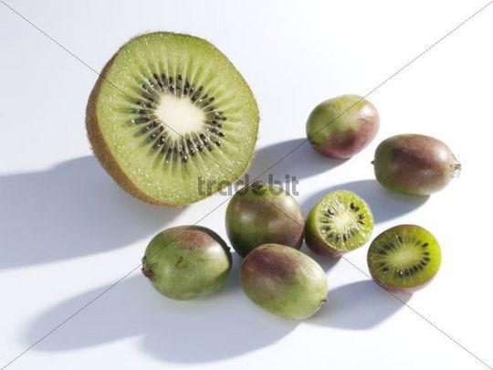 kiwis and mini kiwis cut into halves and whole download abstract. Black Bedroom Furniture Sets. Home Design Ideas