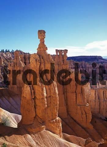 Thors Hammer at the Navajo Loop Trail at Sunset Point, Bryce Canyon, Utah, USA