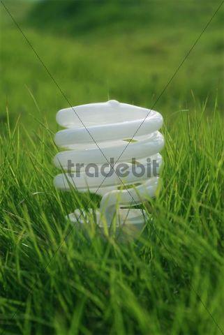 Energy-saving bulb on green grass