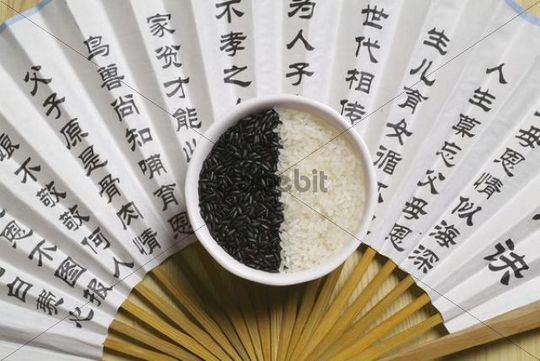 Black and white rice, fan, Chinese culture, China, Asia
