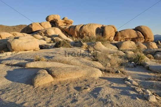 Rock formation, monzogranite, Palm Desert, Joshua Tree National Park, California, USA