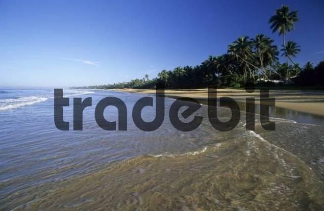 sandy beach of Hikkaduwa