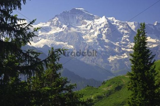 View of the Jungfrau massif, Grindelwald, Bernese Oberland, Switzerland, Europe