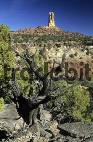 rock formation at Reds Canyon, San Rafael Swell, Utah, USA