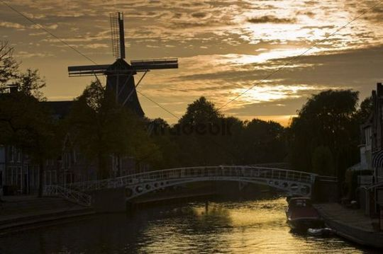 Windmill and bridge in Dokkum, Friesland, Holland, Netherlands, Europe