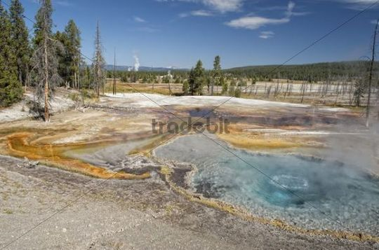 Geysers and hot springs on Firehole Lake, Yellowstone National Park, Wyoming, USA
