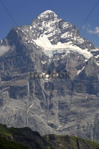 The mighty Wetterhorn massif rising from the valley near Grindelwald, Bernese Oberland, Switzerland, Europe