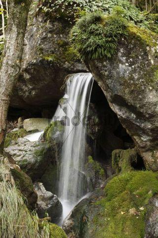 Myra Waterfalls, Muggendorf, Lower Austria, Austria, Europe