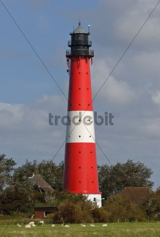 Pellworm Lighthouse, North Frisian Islands, North Friesland district, Schleswig-Holstein, Germany, Europe
