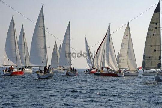 Sailboats, regatta, Primosten, Croatia, Europe