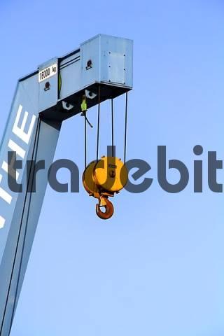 crane hook of a freight crane
