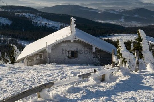 Snow-covered mountain hut on Grossen Arber mountain, Bavarian Forest, Bavaria, Germany, Europe