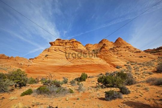 Cottonwood Teepees, Coyote Buttes South, Paria Canyon-Vermilion Cliffs Wilderness, Utah, Arizona, America, United States