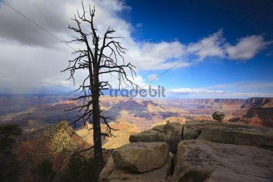 View of the Grand Canyon, Arizona, USA, North America
