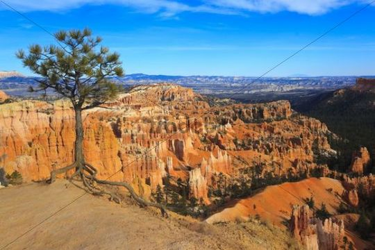 View into the Bryce Canyon, Utah, USA, North America
