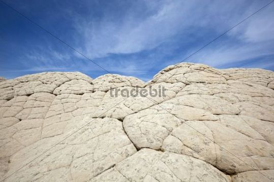 Rock structures, White Pocket, Paria Plateau, Vermilion Cliffs Natural Monument, Arizona, America, United States