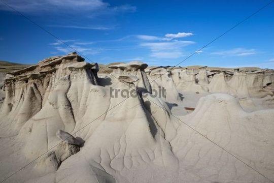 Rock formations, hoodoos, Bisti Badlands, Bisti Wilderness Area, New Mexico, USA