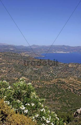 Gulf of Mirambello, in the back Agios Nikolaos, view from the terrace, Moni Faneromenis, monastery, Crete, Greece, Europe