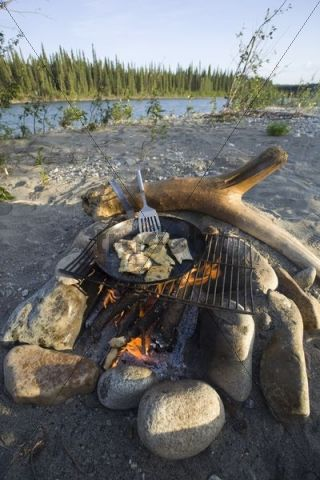 Cooking Frying Fish Fillets On A Camp Fire Bonfire Pan Spatula