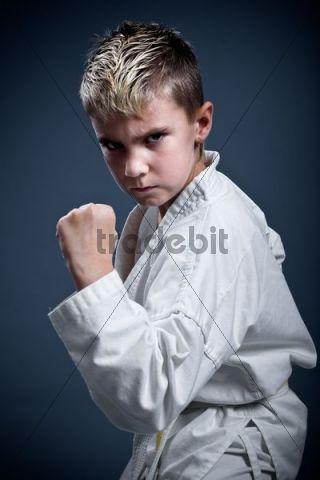 Boy in a karate pose