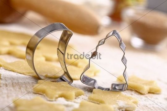 Moon and tree-shaped cookie cutter on cookie dough