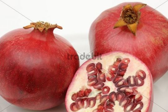 Pomegranates (Punica granatum)